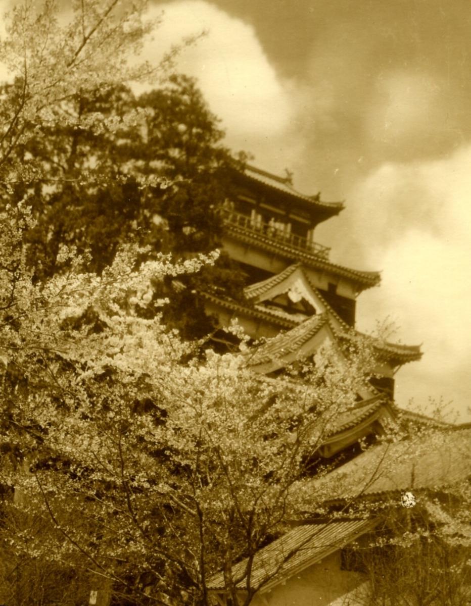 f:id:kouji-katayanagi:20190404192551j:plain