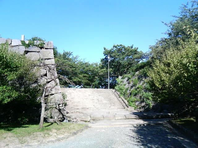 f:id:kouji-katayanagi:20190427223017j:plain