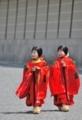 京都新聞写真コンテスト 賀茂祭