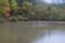 京都新聞写真コンテスト 秋の池畔