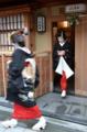 京都新聞写真コンテスト 宮川町の初仕事