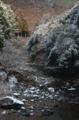 京都新聞写真コンテスト ちょっぴりの雪化粧