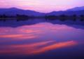 京都新聞写真コンテスト 染まる水面