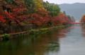 京都新聞写真コンテスト 秋雨