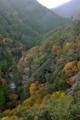 京都新聞写真コンテスト 雨の渓谷