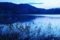 京都新聞写真コンテスト 夜明けの池畔