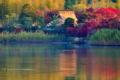 京都新聞写真コンテスト 秋色の池畔
