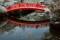 京都新聞写真コンテスト 水鏡