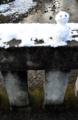 京都新聞写真コンテスト 小さな雪ダルマ