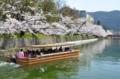 京都新聞写真コンテスト 春のどか