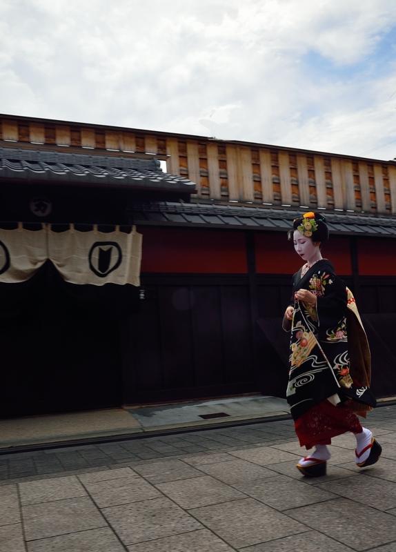 京都新聞写真コンテスト 夏の聲