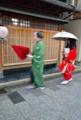 京都新聞写真コンテスト おばけに仮装