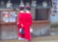 京都新聞写真コンテスト 休日を楽しむ