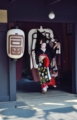 京都新聞写真コンテスト 優美で美しい