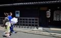 京都新聞写真コンテスト 雅な伝統