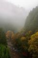 京都新聞写真コンテスト 北山の幻想