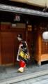 京都新聞写真コンテスト 花街の美