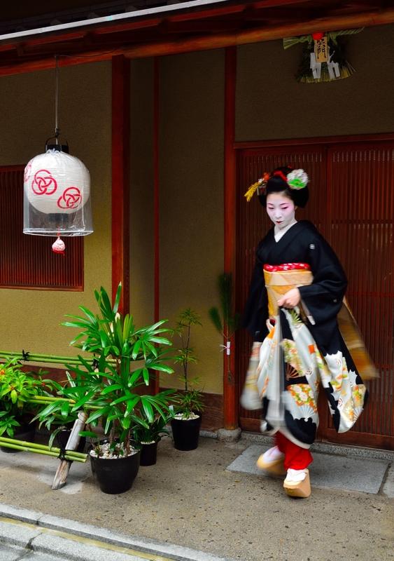 京都新聞写真コンテスト 伝統の輝き