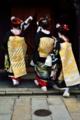 京都新聞写真コンテスト だらりの帯