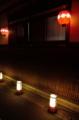 京都新聞写真コンテスト 夜を照らす