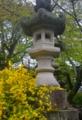 京都新聞写真コンテスト 境内を彩る