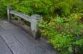 京都新聞写真コンテスト 川沿いを彩る