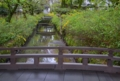 京都新聞写真コンテスト 水面の春