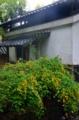 京都新聞写真コンテスト 初夏の輝き
