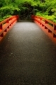 京都新聞写真コンテスト 緑の季節