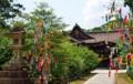 京都新聞写真コンテスト 七夕を飾る