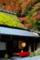 京都新聞写真コンテスト 秋の佇まい