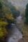 京都新聞写真コンテスト 色ずく渓流
