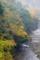 京都新聞写真コンテスト 秋の渓流