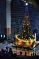 京都新聞写真コンテスト クリスマスイルミネーション1