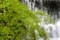 京都新聞写真コンテスト 涼しげな渓