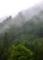 京都新聞写真コンテスト 雨に煙る
