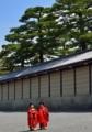 京都新聞写真写真コンテスト お稚児さん