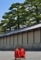 京都新聞写真コンテスト お稚児さん