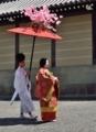京都新聞写真コンテスト 雅な刻