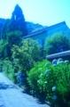 京都新聞写真コンテスト 初夏の朝