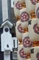 京都新聞写真コンテスト 提灯が並ぶ