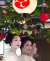 京都新聞写真コンテスト 京美人