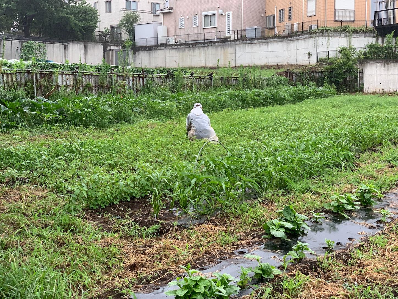 f:id:kouji-ykak4:20190712180600j:image