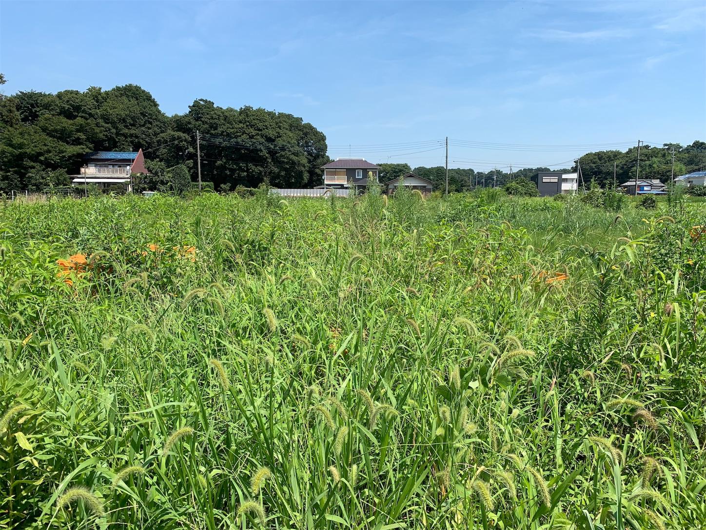f:id:kouji-ykak4:20190808150020j:image
