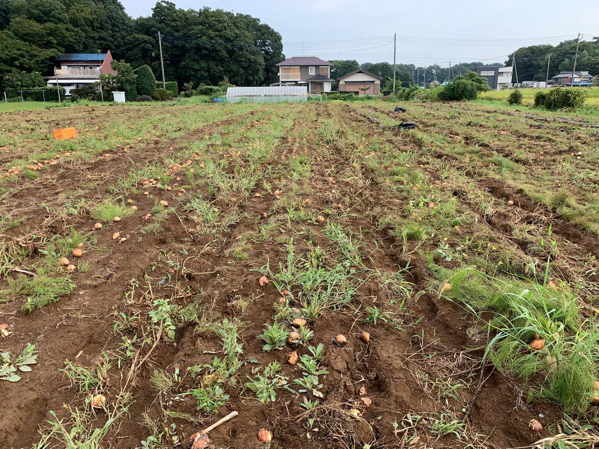 f:id:kouji-ykak4:20190826150404j:plain