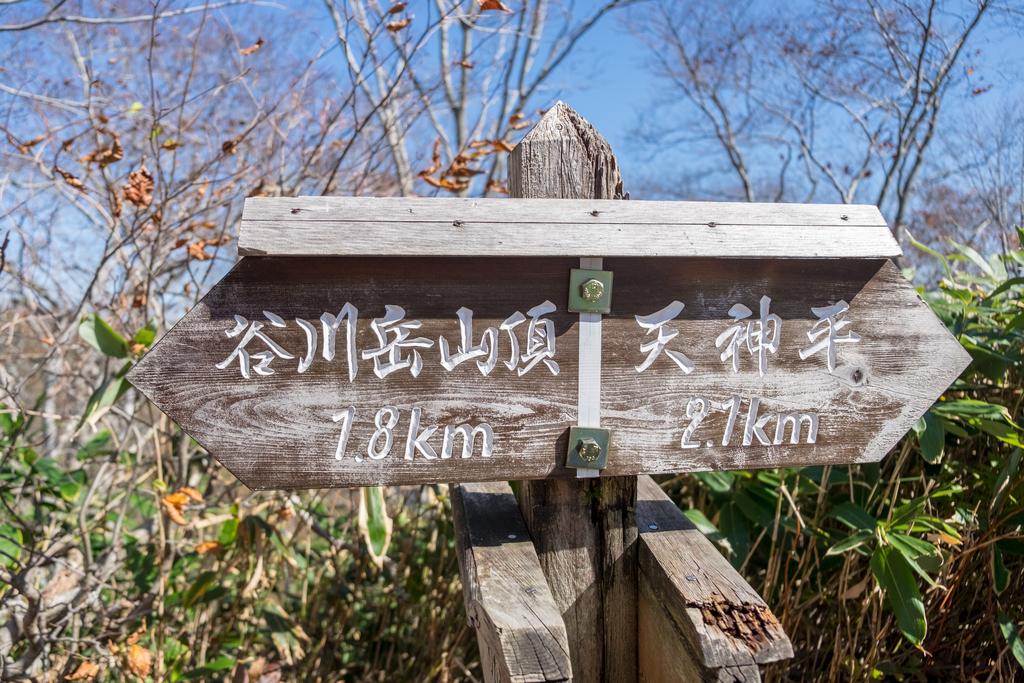 f:id:koujirou6218:20181021232822j:plain