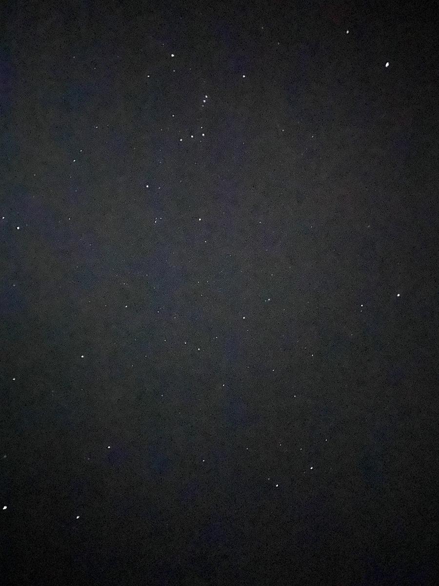 f:id:kouki_dan:20200213234549j:plain