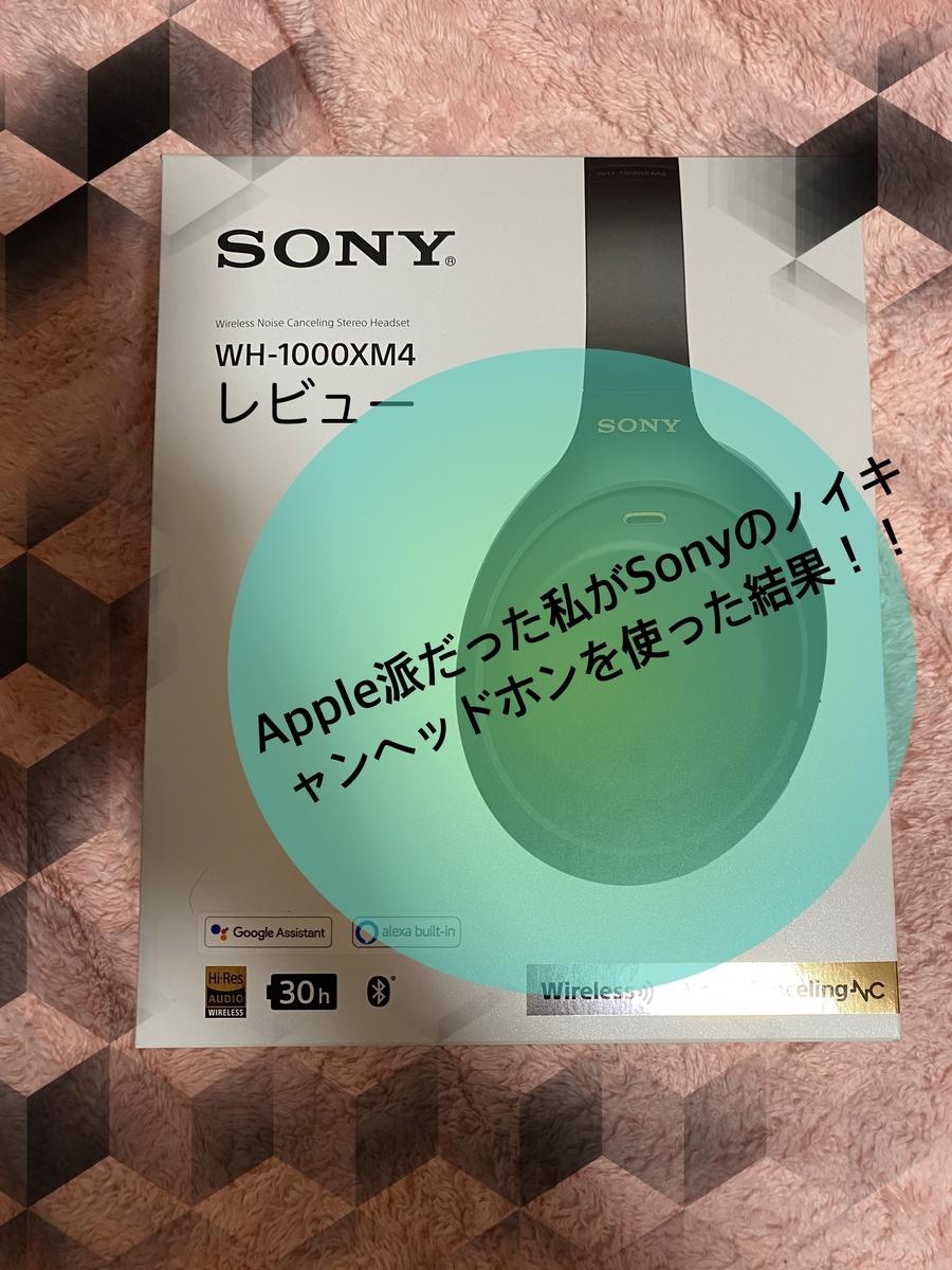 f:id:koukoukou10000:20210108165236j:plain