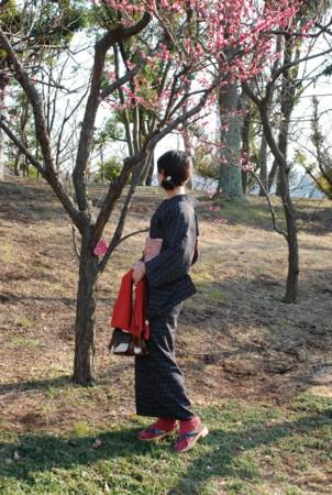 f:id:koume-life:20060111044749j:image