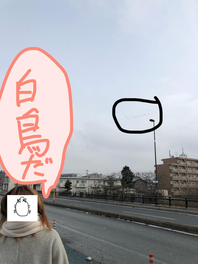 f:id:kousanzgmf:20190123160044p:image